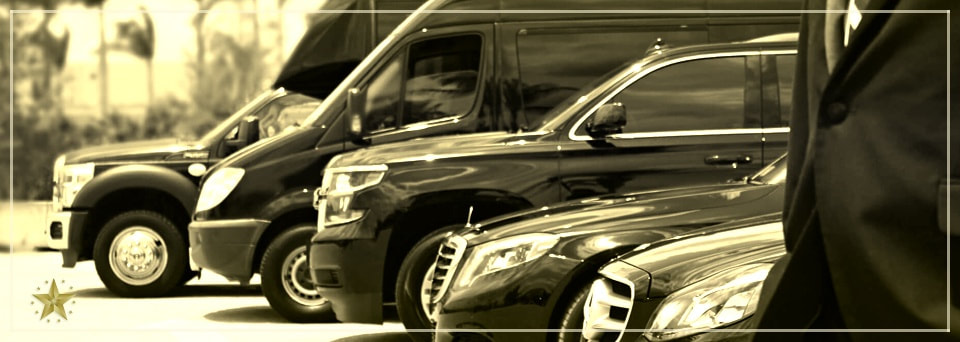 Our selection of vehicles offers a variety of transport options